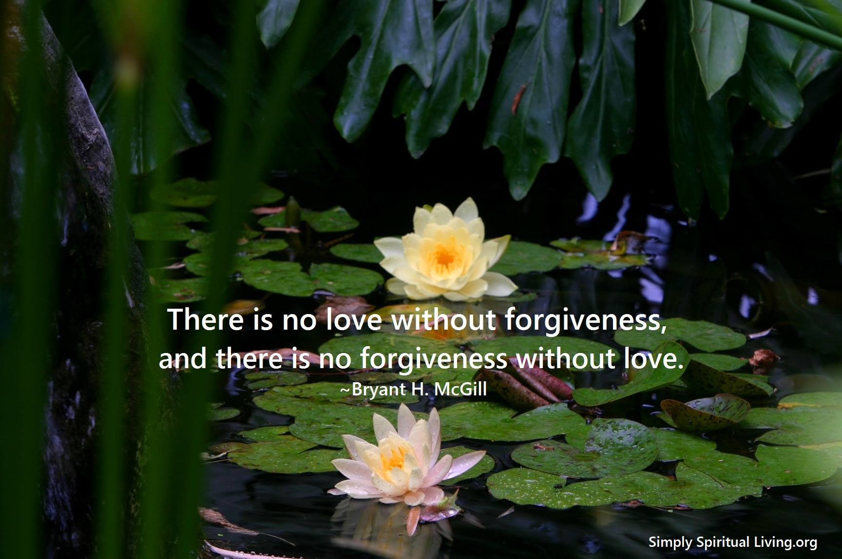 There's No Love without Forgiveness